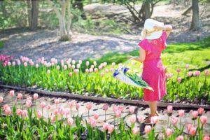 Jardin, Jardinage, Fleurs, Printemps, Tulipes, Femme
