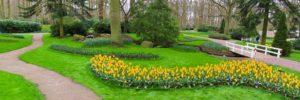 Paysage, Nature, Jardin, Parc, Prairie, Fleurs