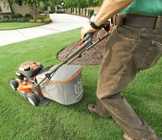 scarifier et fertiliser sa pelouse